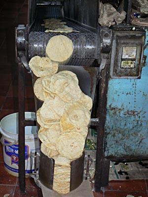 les tortillas dégringolent.jpg
