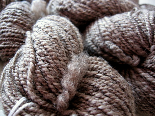 BFL_2ply_Sept09_2