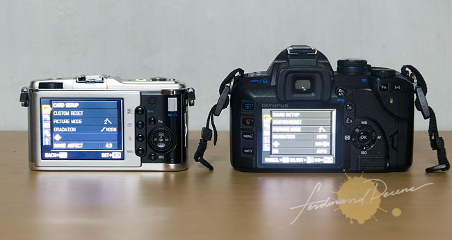 Olympus E-P1 and E-520 Back panel and LCD