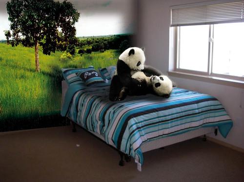 Pandas por baryteck