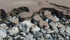 Clashnessie (itmpa) Tags: west slr beach canon coast scotland sand sandy shoreline scottish pebbles atlantic shore sutherland westcoast 30d canon30d clashnessie tomparnell claisaneasaidh itmpa archhist
