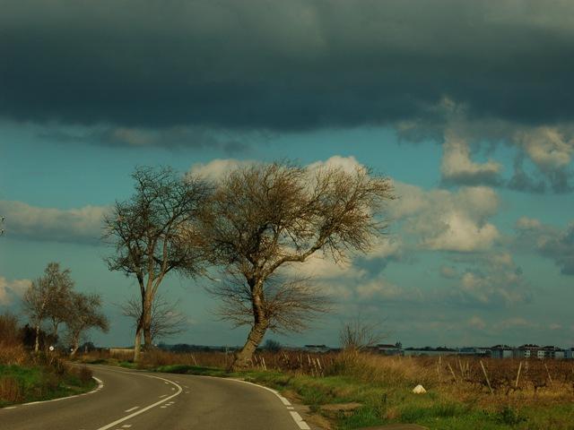 Chuva, relâmpagos, enfim ... Açores - Página 2 4307058194_c174c0fd03_o