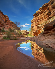 Grand Gulch Reflection (Gary Randall) Tags: reflection utah desert grand canyon gulch cedarmesa grandgulch garyrandall 10045722