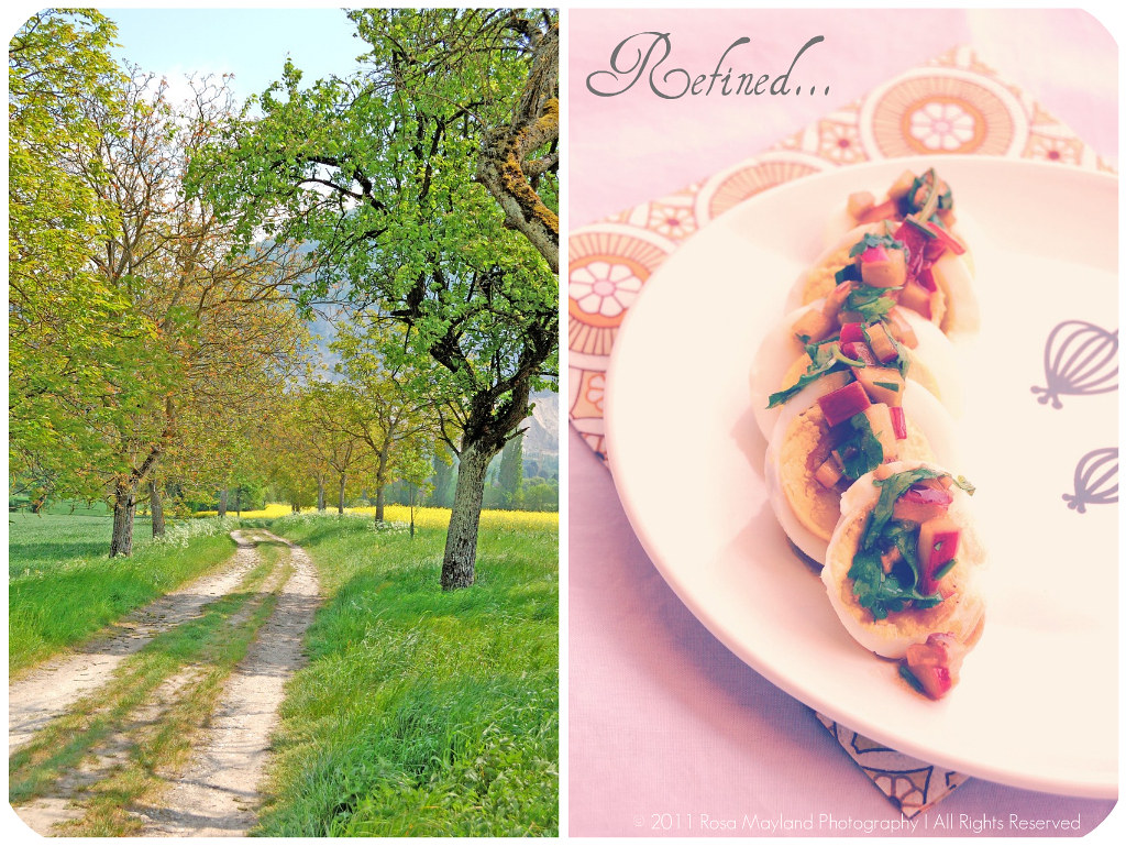 Egg Salad Picnik collage 5 bis