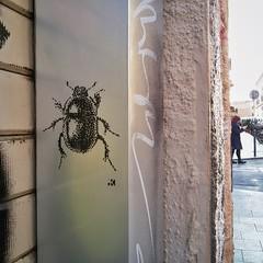 IMG_20161127_155052 (.krayon) Tags: krayon insect stencil streetart pixel pixelart scarafaggio streetphotography pixelartist