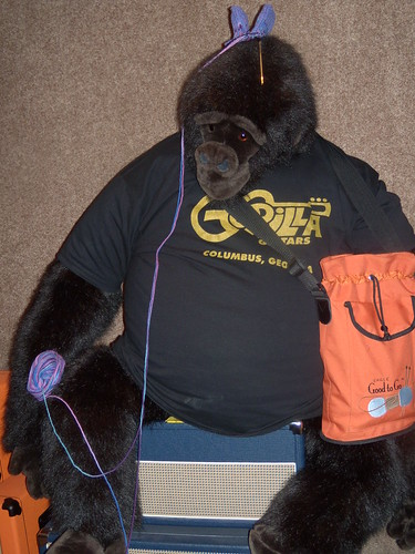 Gorilla stole my bag and my project!
