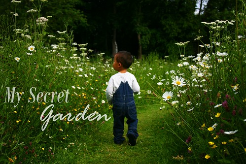 flowermeadow9