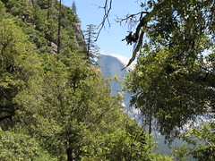 Half Dome from Upper Yosemite Fall Trail. (Yosemite Village, California, United States) Photo