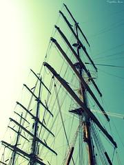 The Tall Ships' Races 2009 (anka.anka28) Tags: ship poland polska tallship gdynia statek pomorze agle aglowiec agiel platinumheartaward zlotaglowcw thetallshipsraces thetallshipsraces2009 thetallshipsraces2009gdynia