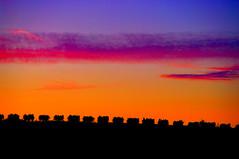 colori del sannio (Angelo Orsillo) Tags: desktop flickr italia pentax museo sannio orsillo pietrelcina yourcountry campaniafoto beneventofoto sanniofoto sanniocolori visualoptica