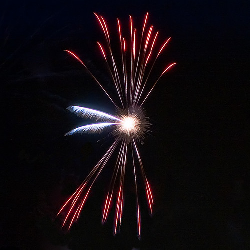Butterfly Fireworks 蝴蝶煙火
