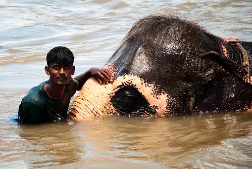 Chitwan 09