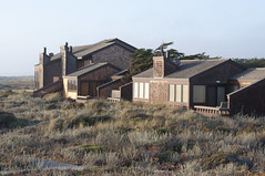 Monterey Dunes Colony