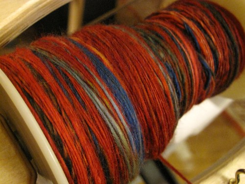 All Spun Up - Scarlet Macaw
