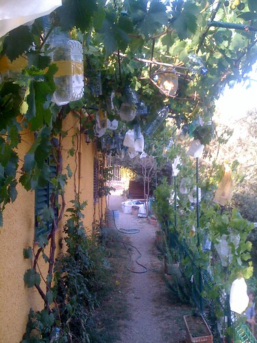 Jardins Ideais