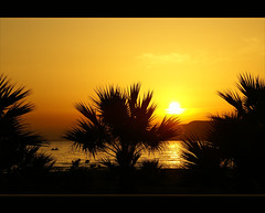 sunset and palmtrees......... (atsjebosma) Tags: travel sunset sea mountains turkey boat zonsondergang silhouettes zee explore palmtrees bergen bootje turkije genieten palmbomen pamucak atsjebosma