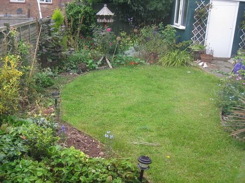 Lower lawn 08/2009