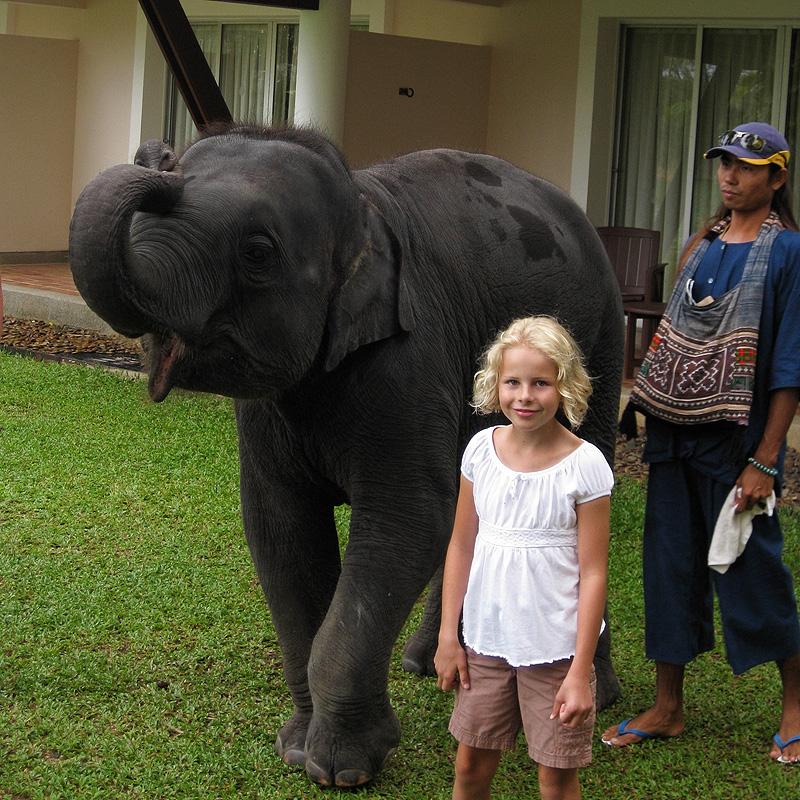 Hotel Elephant 03