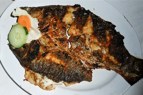 Grilled Live Sea Bass