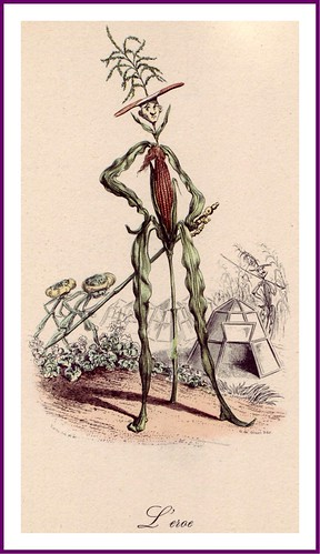 017-Drôleries végétales, ou L'Empire des légumes- Pierre Amédée Varin