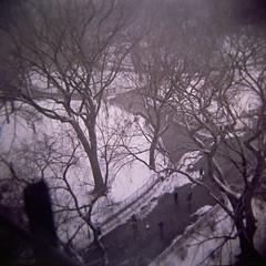 Tompkins Square Park (leeahh) Tags: nyc newyorkcity trees winter snow lomo lomography lowereastside toycamera diana