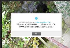 0201_copy