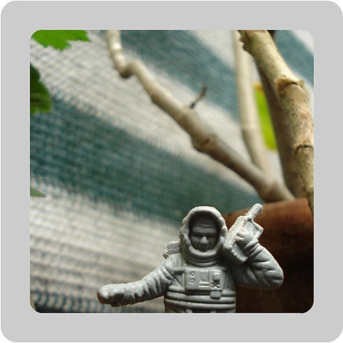 astronauta.....