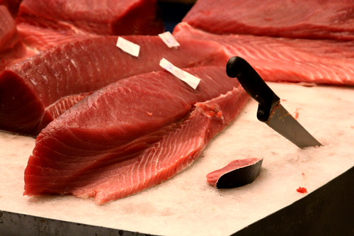 Fresh cut tuna at International Marine Products
