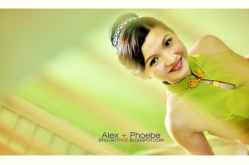 Phoebesgr41