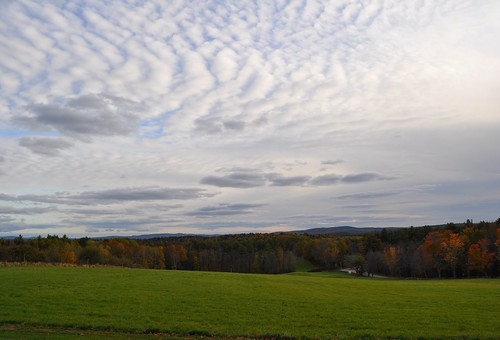 Field at Shaker Village in NH