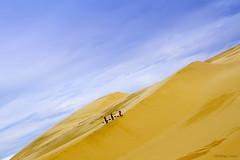 Up (-clicking-) Tags: sky bluesky vietnam sandhill landscap phanthiết bàutrắng