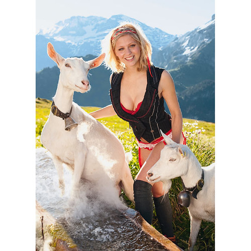 miss-swiss-2_1512558i
