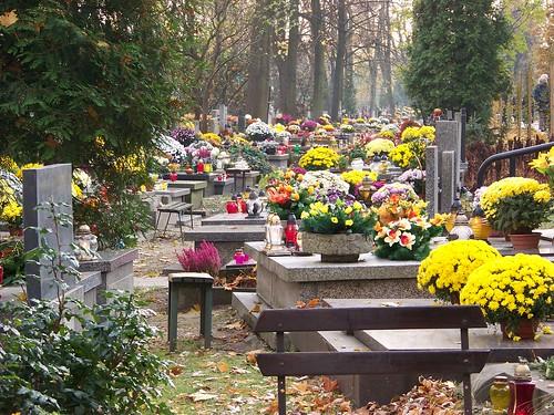Chúng tôi rời nghĩa trang mà cảm thấy được khích lệ, được truyền thêm nghị lực. Người Ba Lan quả thật là những tấm gương lịch sử tuyệt vời. Thành lòng cảm tạ và biết ơn!