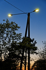 Nightlight (pni) Tags: street light sunset sky tree lamp leaves suomi finland evening helsinki quiet sundown post lamppost helsingfors skrubu pni pekkanikrus