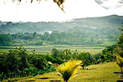 Indonesia_2011-37