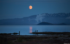 Fishing Under a Blue Moon - ingvellir, Iceland (skarpi - www.skarpi.is) Tags: travel moon mountain lake snow ice island fly iceland nationalpark fishing energy power or calm steam fullmoon flyfishing bluehour traveling powerplant trout geothermal thingvellir ingvellir sland veii veiifer bluemoon vatn orka nesjavellir geothermalenergy thingvellirnationalpark veiitr orkuveitan nesjavallavirkjun hitaveita orkuver nesjar jgarur skarpi stuvatn jarhiti orkuveitareykjavkur jarvarmi jgarurinn skarphinnrinsson travelingiceland veiimyndir