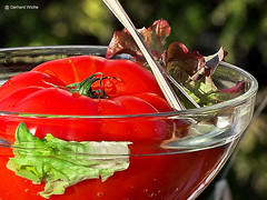 Spring messenger (GerWi) Tags: tomate obst gemüse vegetables rot outdoor wasser schale