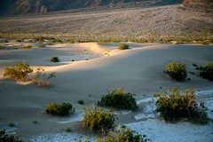 Death Valley National Park-410