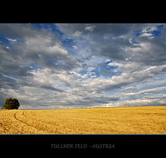 LOWER AUSTRIA (VINCENT MOYASHI) Tags: summer sky color june clouds landscape austria corn europe wind 2009 digitalcameraclub justclouds nikond90 100commentgroup