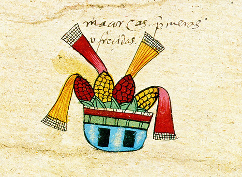 mazorcas codex borbonicus