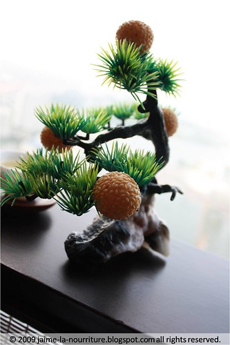 SCDH - tree