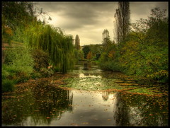 Cloudy afternoon reflections (Mike G. K.) Tags: park autumn trees sky lake france fall water leaves clouds reflections geotagged cloudy overcast foliage strasbourg explore alsace bushes hdr photomatix explored 3exp yourwonderland geo:lat=48576153 geo:lon=7774383 citadellepark mikegk:gettyimages=submitted