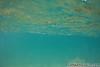 IMG_0426copyright (surf party cruise) Tags: sandys sandybeach honoluluhawaii magicsands