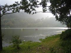 223. Misty Munnar (profmpc) Tags: mist lake forest landscape dam mpc munnar catchment kundala