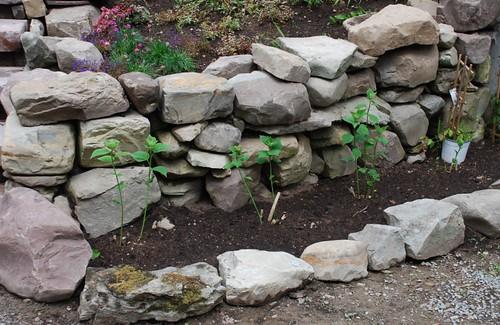 Terrace Garden Walls