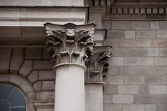 (wenzday01) Tags: travel ireland dublin architecture nikon europe details trinitycollege trinity nikkor éire d90 nikond90 18105mmf3556gedafsvrdx