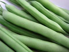 Sperzieboontjes - Beans Eerste oogst: 18 stuks / 73 gram