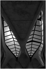 Saint Exupry Calatrava (Manuel.A.69) Tags: light shadow abstract france bird station architecture spider arquitectura nikon shadows lyon gare lumire transport wing rhne structure ombre espanol calatrava estacion getty architektur forms alta form 1994 velocidad oiseau span mtal tgv santiagocalatrava mouvement araigne verre saintexupry lyons architectura abstrait bton spaniard rgion gravit formes d90 rhnealpes ingnierie espagnol satolas archittetura lyrique majestueux appert structuremtallique manuelappert gifranceaug