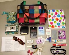 stuffs in my bag (bmurphy502) Tags: whatsinmybag harveyseatbeltbag