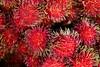 rambutan (ion-bogdan dumitrescu) Tags: hairy food fruit sweet malaysia kualalumpur rambutan bitzi sapindaceae mg9269 summer09 nepheliumlappaceum ibdp findgetty ibdpro wwwibdpro ionbogdandumitrescuphotography